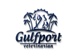 animal hospitals gulfport