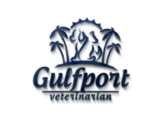 Gulfport Veterinarian – St. Petersburg FL 33707