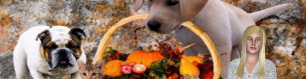 Be Careful What You Feed Your Pet on Thanksgiving